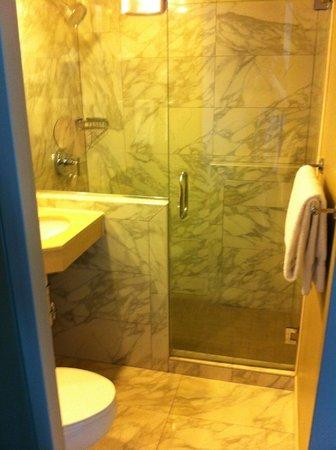 Holiday Inn Express Denver Downtown : bathroom