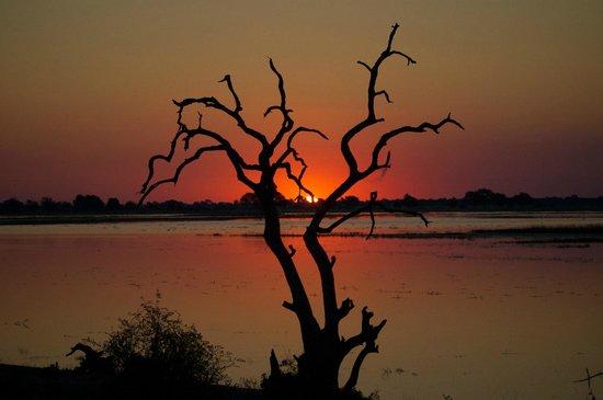 Muchenje Safari Lodge: Priceless sunset views