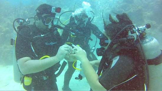 Diving Dominican Republic: Will you marry me?
