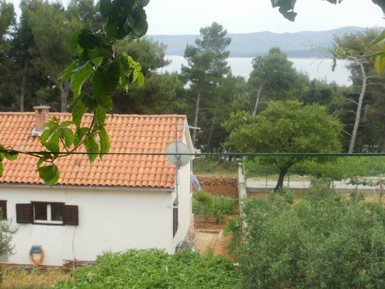 Guesthouse Sandra: View from the terace