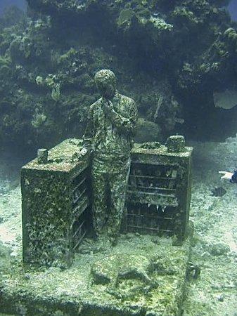 Paradise Divers: musa