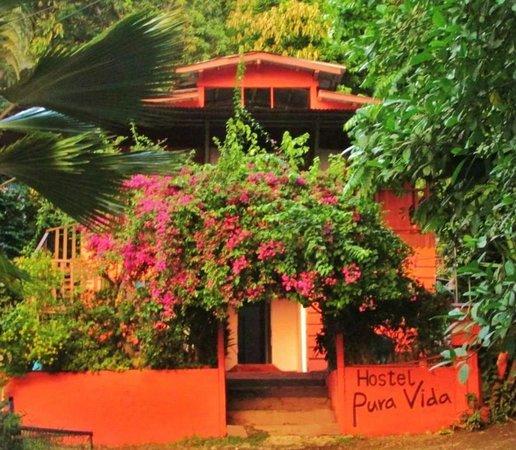 Hostel Pura Vida Montezuma