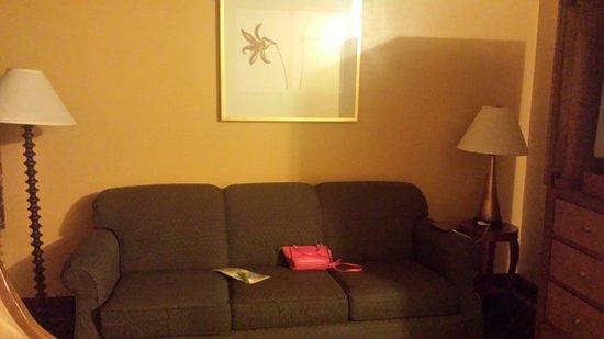 Celebration Suites: Living room