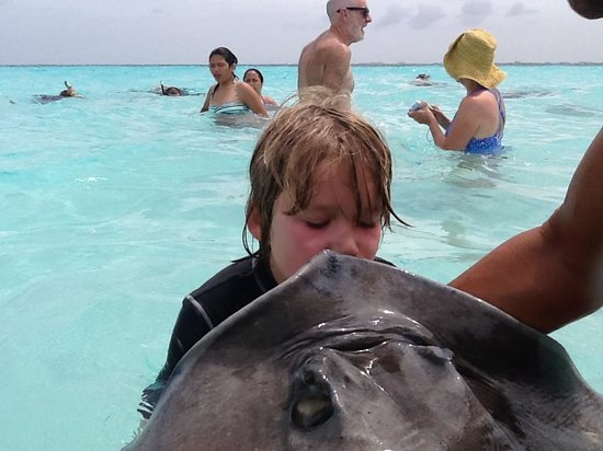 Best Value Watersports Ltd: Kisses with the Stingrays- remember years of good luck!