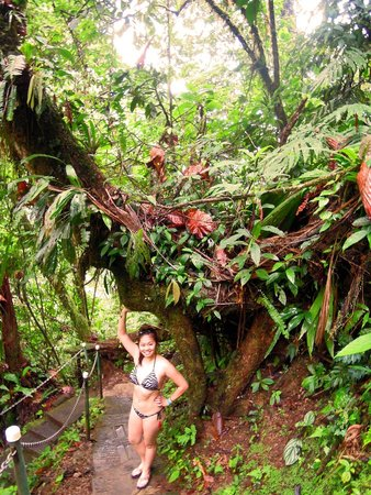 Arenal Mundo Aventura: hiking towards the waterfall