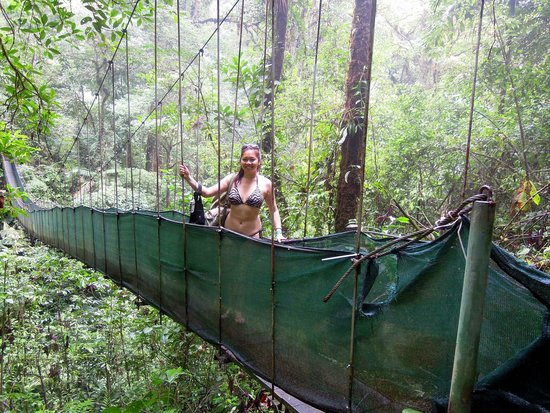 Arenal Mundo Aventura: crossing the bridge to the waterfall