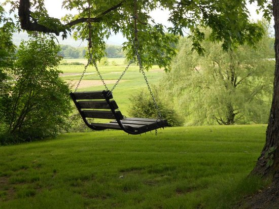 Oxford House Inn : Enjoy a relaxing swing in the shade of the maple