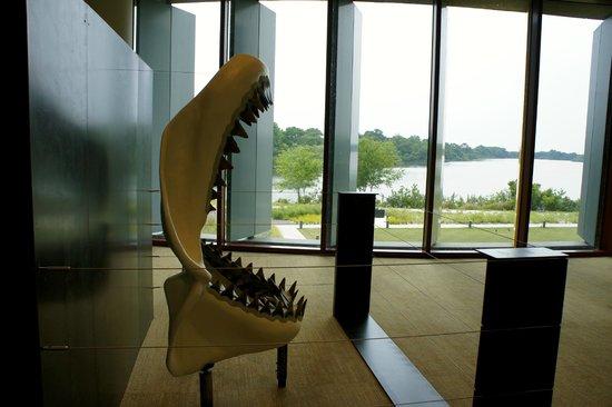Streamsong Resort: The Megalodon, a popular photo spot