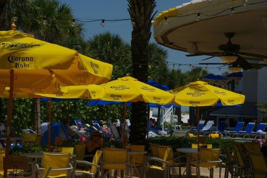 Hilton Clearwater Beach : Sand bar