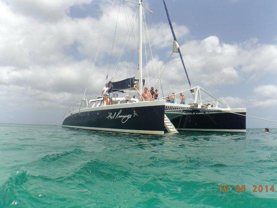Cool Runnings Catamaran Cruises : cool runnings 3
