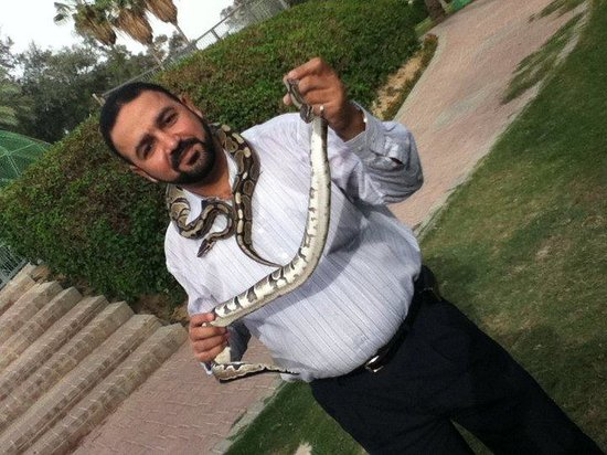 Doha Zoo: with the snake
