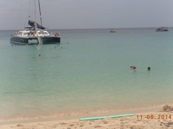 Cool Runnings Catamaran Cruises : view from the beach