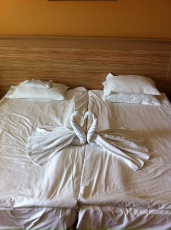 DIT Evrika Beach Club Hotel : love swans