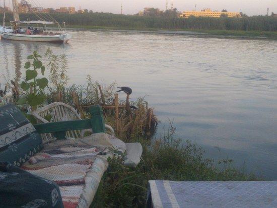 Al Baeirat Hotel : Nile view