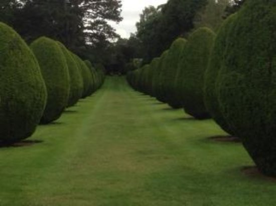 The Elvetham: Topiary Avenue