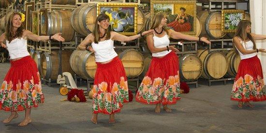 MJA Vineyards: Hula in our Cellar--Westside Santa Cruz, CA