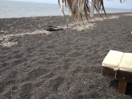 Veggera Hotel: Black sand beach