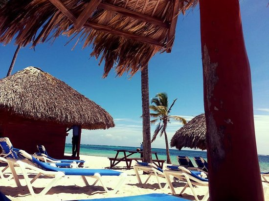 Natura Park Beach - EcoResort & Spa: Cabanas on the Beach next to the bar