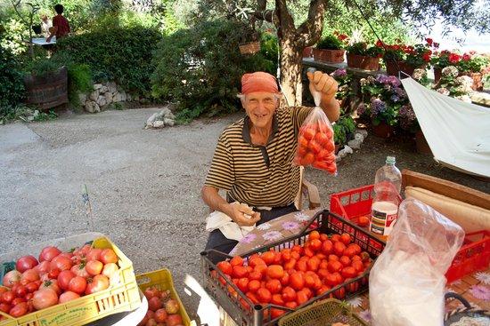 Agriturismo Antico Casale Colli di San Pietro: fresh veggies from the garden selected by padre della casa