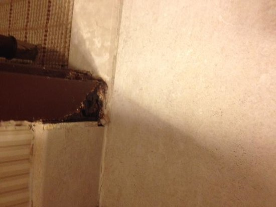 Sheraton Columbia Town Center Hotel : dry-rot is a reason to shut the room down