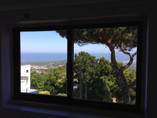 Quinta Colina Flora : Ocean view from Camellia Room