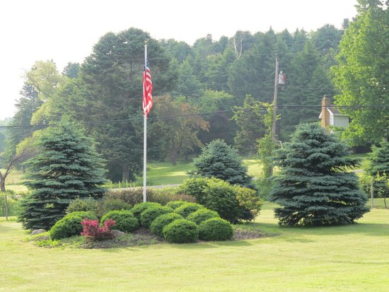 Vineyard Bed and Breakfast : Flag and Landscape