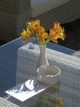 Parkhotel Brenscino: Gepflegte Aufmerksamkeiten auf der Sonnenterrasse