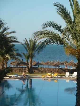 Diana Beach Hotel : Vue de la terasse/reception