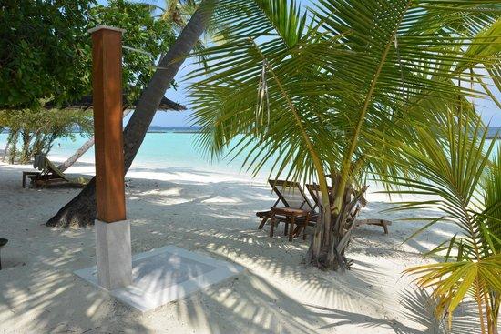 Kurumba Maldives : На пляже все удобства
