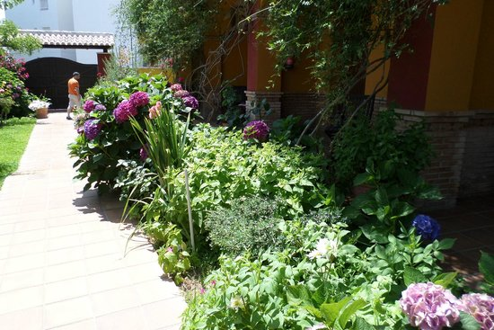 Hotel Donana Blues : alrededor jardin interior