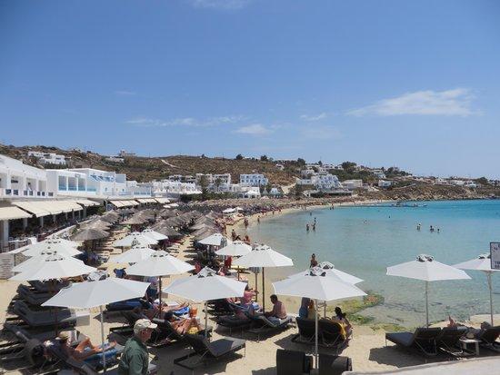 Argo Hotel Mykonos: Beach - sunbeds close together but still beautiful