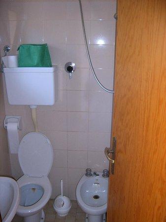 Hotel Zenith: Dusche / WC