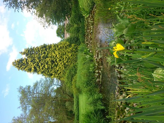 Cae Hir Gardens: Lower water garden
