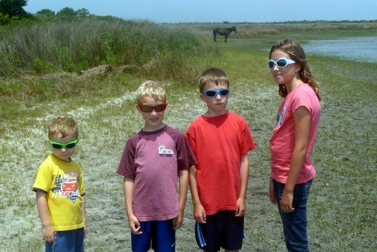 Shackleford Banks : You can tell how excited the kids were to see the horse.
