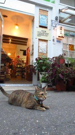 Susu Guesthouse : 入口で飼い猫がお客さんを出迎えます