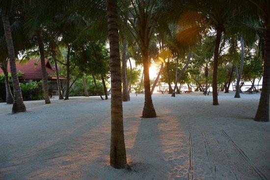 Kurumba Maldives : На рассвете