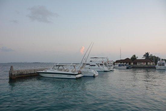 Kurumba Maldives: Пристань