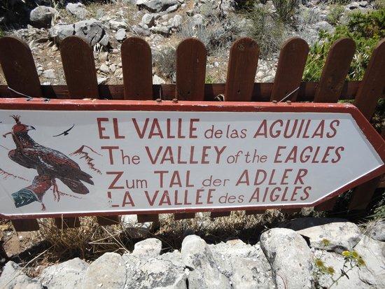 Teleferico Benalmadena : direction du spectacle