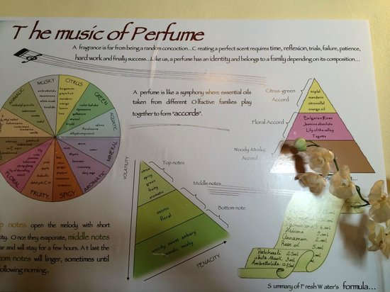 The Bermuda Perfumery: The Music of Perfume