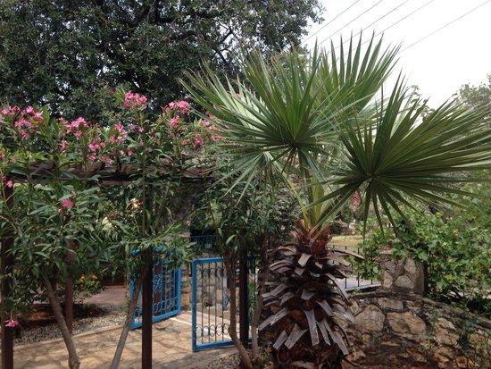 Tunacan Hotel: Tunacan Garden