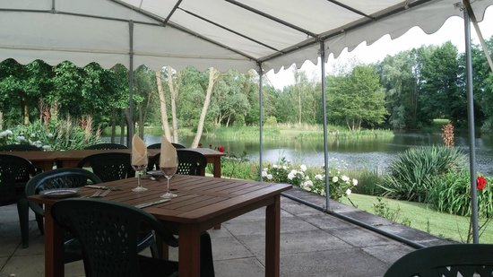 Halliford Mere Lakes & Restaurant: View from our table