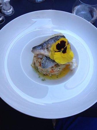 Le Carnet de Bord : risotto au legumes printanier et foie gras + poisson du port d'Antibes(liche, daurade, bar)