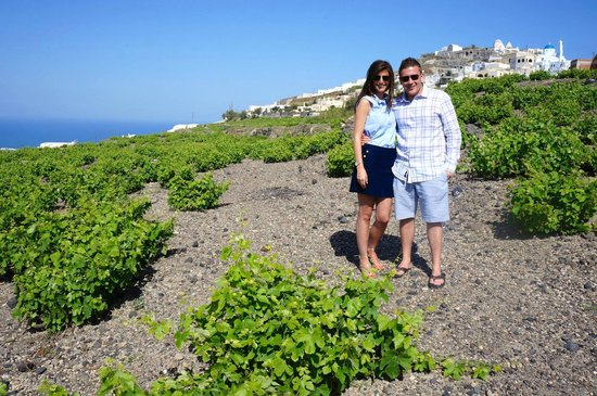 SAFOWI Santorini Food and Wine Tours : Out in the vineyards