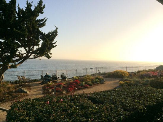 Cottage Inn by the Sea : View from our oceanfront window