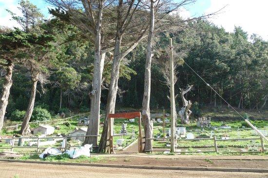 Остров Робинзона Крузо, Чили: Eingang zu Friedhof von Robinson Crusoe
