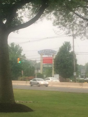 Red Lobster: across for the Brunswick Square Mall