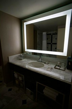 MGM Grand Hotel and Casino: Bathroom