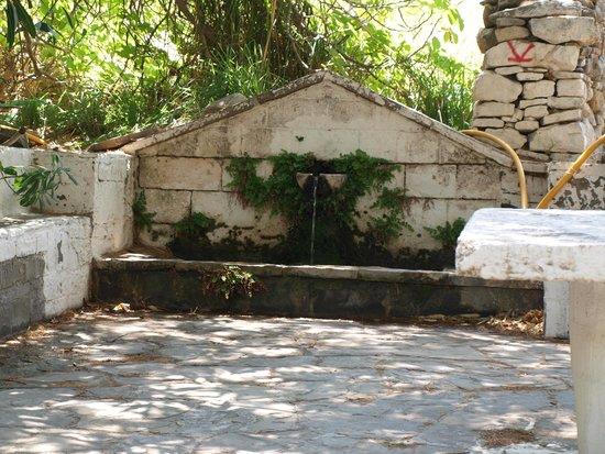 Vananda Beach: Vananda  la fontana