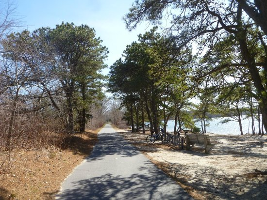 Cape Cod Rail Trail: Spring along the trail