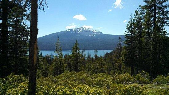 Lemolo Lake Resort : View from afar